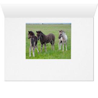 Plus de chevaux en abondance (horizontal) carte de vœux