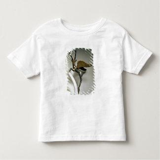 Poignée de vase sous forme de bouquetin à ailes, t-shirt pour les tous petits