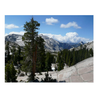Point III d'Olmsted en parc national de Yosemite Carte Postale