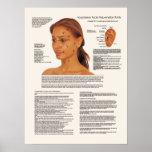 Points faciaux de rajeunissement d'acuponcture cos affiche
