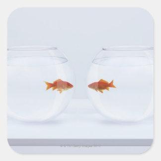 Poisson rouge dans des bocaux poissons distincts sticker for Bocal rond poisson