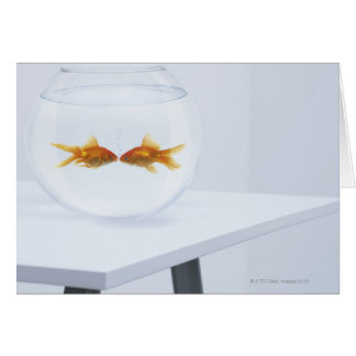 Cartes bocal poissons rectangulaires cartes de v ux for Bocal poisson acheter