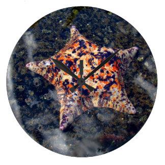 Poissons colorés d'étoile d'horloge de mur grande horloge ronde