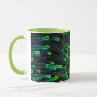 Poissons d'anémone se cachant dans l'anémone, mug