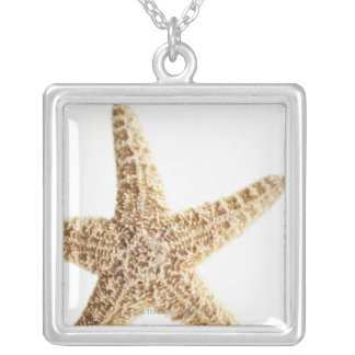 Poissons d'étoile collier