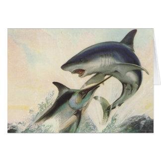 Poissons - Marlin noir et requin de Mako Carte De Vœux