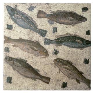 Poissons (mosaïque) grand carreau carré