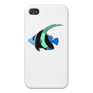 Poissons rayés bleus d ange étui iPhone 4/4S