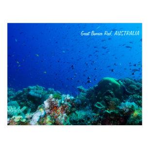 Poissons tropicaux de la carte postale de mer de