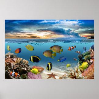 Poissons tropicaux sous-marins de récif coralien posters