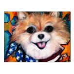 Pomeranian parfait carte postale