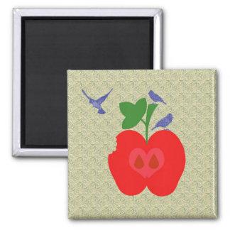 pomme d'api magnet carré