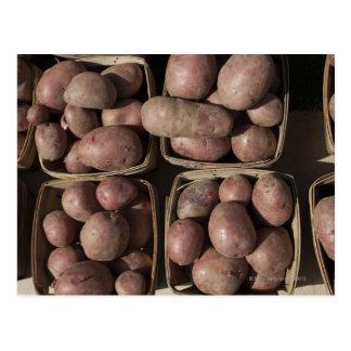 Pommes de terre au marché d'un agriculteur de New Carte Postale