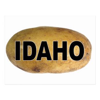Pommes de terre ovales de décalque de voiture carte postale