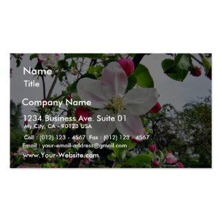 Pommier Dans la fleur Carte De Visite Standard