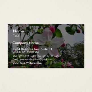 Pommier Dans la fleur Cartes De Visite