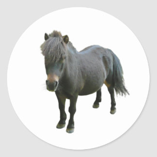 Poney mignon de Dartmoor Sticker Rond