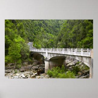 Pont au-dessus de courant, parc national de poster