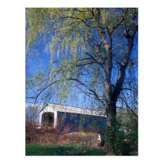 Pont couvert supérieur Berkshires mA de Sheffield Carte Postale