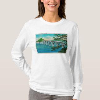 Pont de baie de roucoulements dans la courbure du t-shirt