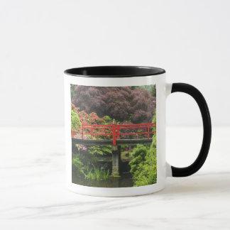 Pont de coeur avec les rhododendrons de floraison, tasse