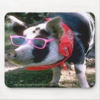 Porc avec les lunettes de soleil et le Bandana Tapis De Souris