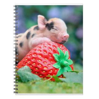 porc de fraise carnet