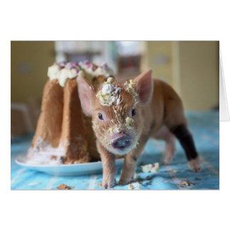 Porc drôle et le gâteau cartes