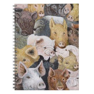 Porcs en abondance carnets