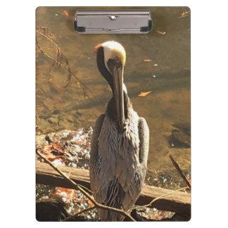 Porte-bloc Brown et oiseau gris avec le long bec