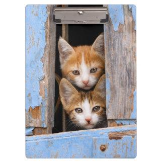 Porte-bloc Chatons mignons de chat dans une photo vintage