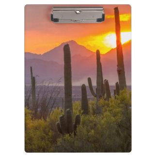 Porte-bloc Coucher du soleil de cactus de désert, Arizona