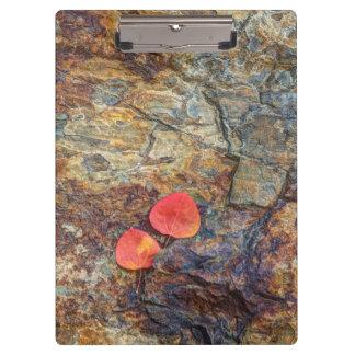 Porte-bloc Feuille d'automne sur la roche, la Californie