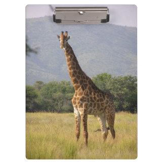 Porte-bloc Girafe