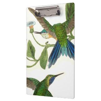 Porte-bloc La faune bleue d'oiseaux de colibri fleurit le