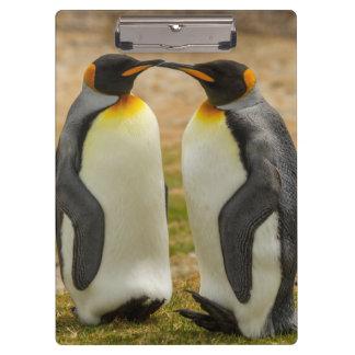 Porte-bloc Paires du Roi pingouins, Malouines