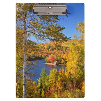 Porte-bloc Paysage d'arbre d'automne, Maine