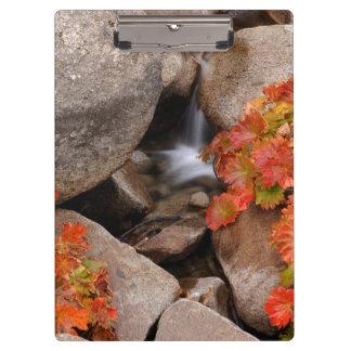 Porte-bloc Petite crique en automne, la Californie
