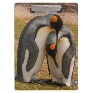 Porte-bloc Pingouins de roi caressant, les Malouines