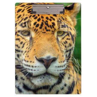 Porte-bloc Plan rapproché d'un visage de jaguar, Belize