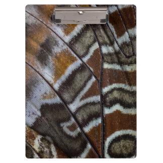Porte-bloc Plan rapproché tropical de papillon de Brown