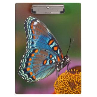 Porte-bloc Profil de papillon sur une fleur