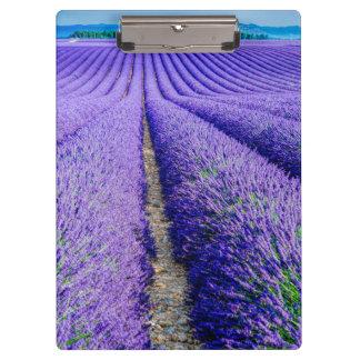 Porte-bloc Rangées de lavande, Provence, France
