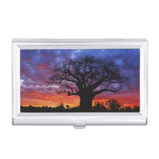 Porte-cartes De Visite Arbre africain de baobab, digitata d'Adansonia, 2