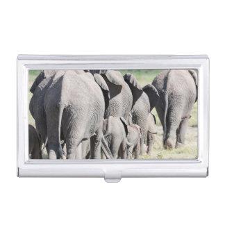 Porte-cartes De Visite Éléphant de Bush d'Africain (Loxodonta Africana) 4