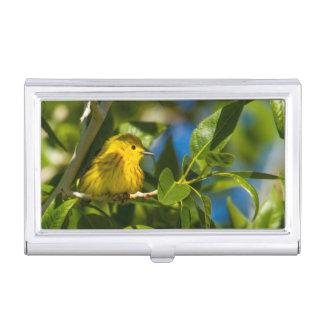 Porte-cartes De Visite Fauvette jaune dans l'arbre près d'Augusta,