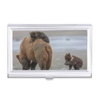 Porte-cartes De Visite Ours et petits animaux de Brown