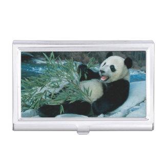 Porte-cartes De Visite Panda mangeant le bambou par la berge, Wolong, 2