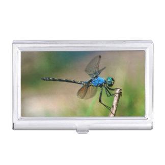 Porte-cartes De Visite Plan rapproché d'une mouche bleue de dragon sur