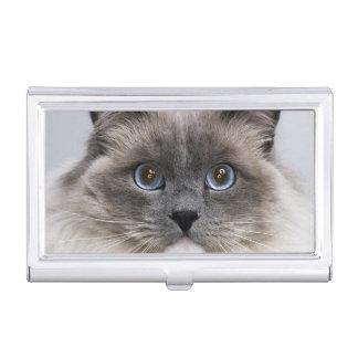 Porte-cartes De Visite Portrait de chat de Ragdoll